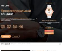 Профессиональный лендинг — Настройка для приложения Сайт